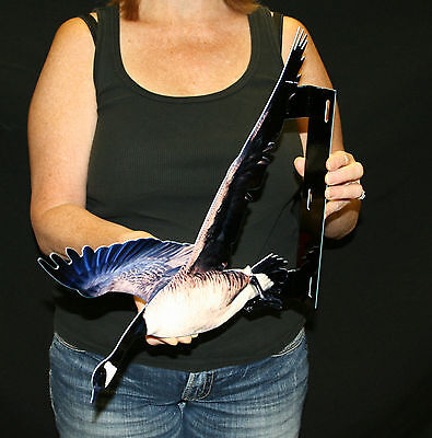 CANADIAN GOOSE FLANGE WALL SIGN -  - FLAT METAL SIGN - PhotoSTEEL