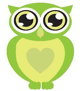 Big Eyes Green Owl Movable Wall Stickers