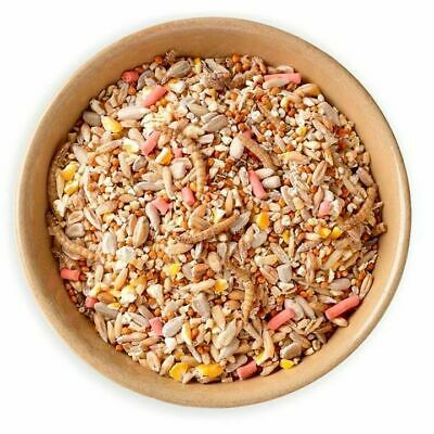 20kg Super Premium Wild Bird Seed - All Season Mix With Mealworms & Suet Pellets