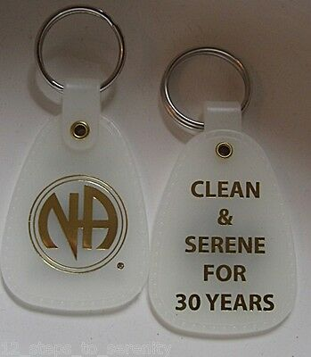 NARCOTICS ANONYMOUS > 30 years < NA MOON GLOW KEY TAG ANNIVERSARY