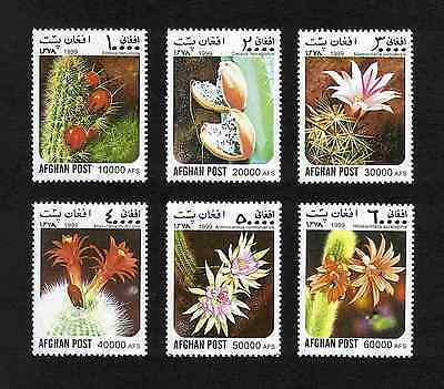 Afghanistan 1999 Cactus Flowers complete set of 6 values MNH