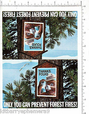 7135 Smokey the Bear 1967 postcards /2 Pennsylvania Dept of Forests & Water fire