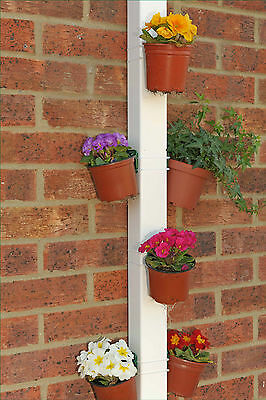 POTS-UP! (6 clips to hang pots)