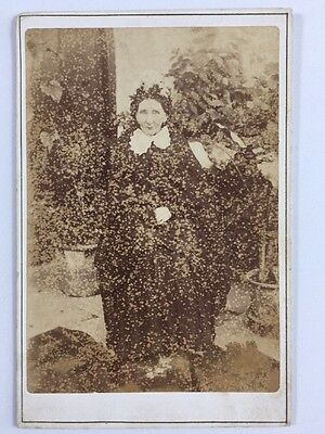 Victorian Cabinet Card: Lady: JT Mathias: Cardigan: Stamped By Chemist Evans