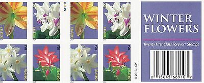 U.S. 2-SIDED BKLT PANE OF 20 SCOTT#4865b (49ct) 2014 WINTER FLOWERS P#S11111
