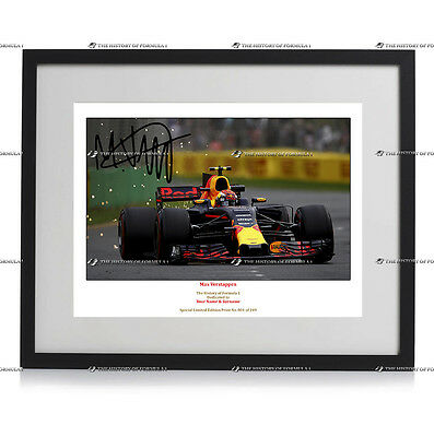 Max Verstappen Formula 1 Red Bull Racing Autograph Signed