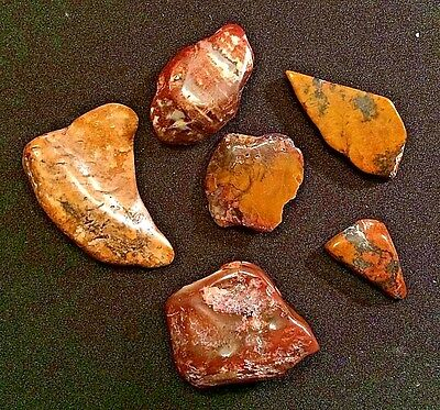 Lot of 6 Polished Rocks in Various Sizes and Shapes