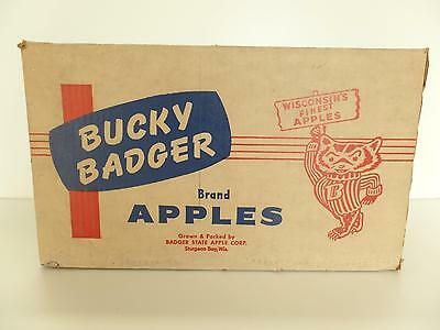 Bucky Badger Cardboard Box Brand Wis Tray Pack Apple Container Sturgeon Bay Vtg