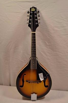 Rogue RM-100A 8 String Mandolin Guitar  Near Mint!!!