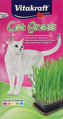 Vitakraft Kitty Cat Grass Seed Growing Kit for Cats Grow Your Own Also Refill