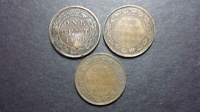 Canada Large Cent Coin Lot - 1894, 1917, 1918