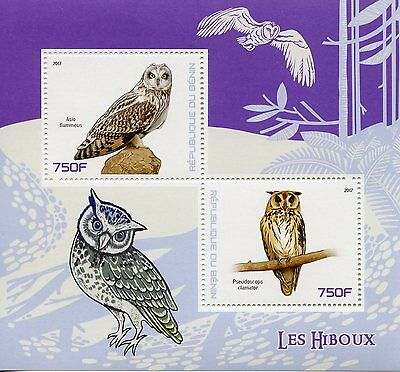 Benin 2017 MNH Owls 2v M/S Short-Eared Striped Owl Birds Stamps