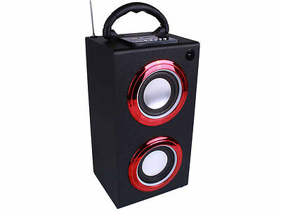 Portable Bluetooth Speaker with LED Lights, Carry Handle, FM Radio, USB Charger