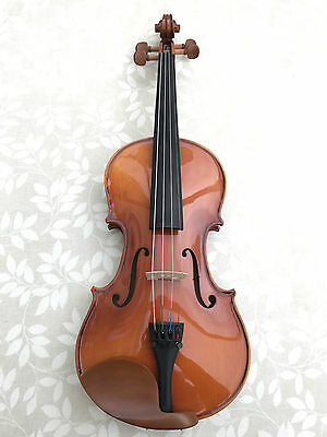 Brand New Good Quality Student Violin Full Size