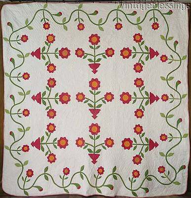 """Fancy! ANTIQUE Early c1850 Red Green Cheddar Large QUILT 88"""" x 87"""" Vining Border"""