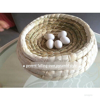 Racing Pigeon Bird Breeding Nest Birds Boxes stable style no turnover