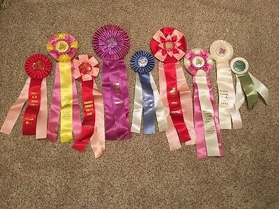 Lot of 9 Horse Show Ribbons Vintage 1990s Events in Michigan #3