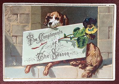 Vintage Greeting Card - With Compliments Of The Season (Dog)