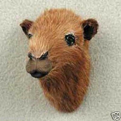 CAMEL! Fur Magnets. Go to sellers other items for more animal magnets!