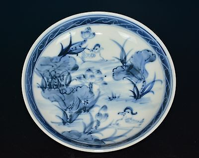 Exquisite Chinese Blue And White Porcelain Plate Marked Y3412
