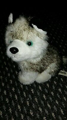 soft toy husky dog