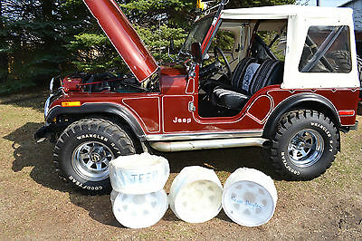 1979 Jeep CJ 2 DOOR CJ-5 WHITE SOFT TOP 1979 Jeep CJ-5 rare find, mint condition. Straight from dealership never tittled