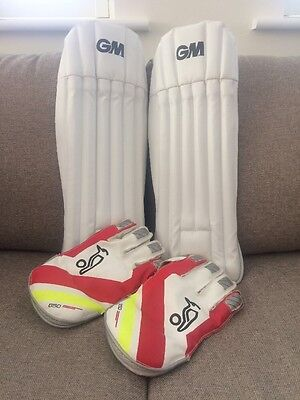 Youth Wicket Keeping Pads and gloves