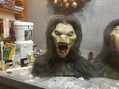 american werewolf in london prop.