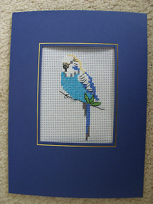 """Completed Cross Stitch Card Budgie 8""""x6"""""""