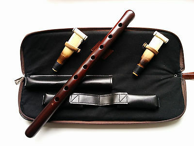 Armenian Professional Duduk, Musical Instrument from Apricot Wood with 2 Reeds