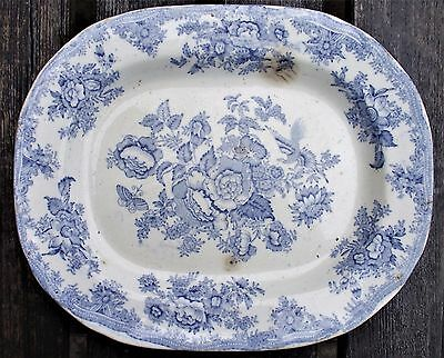 Antique 1850s Transfer Printed Blue And White Meat Dish / Platter