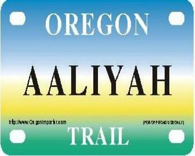 AALIYAH Oregon Trail - Mini License Plate - Name Tag - Bicycle Plate!
