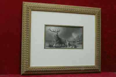 THE STAG AT BAY THE ART JOURNAL 1870 Cuadro grabado al acero