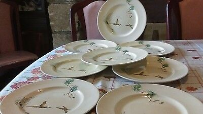 royal doulton coppice .dinner plates x 8