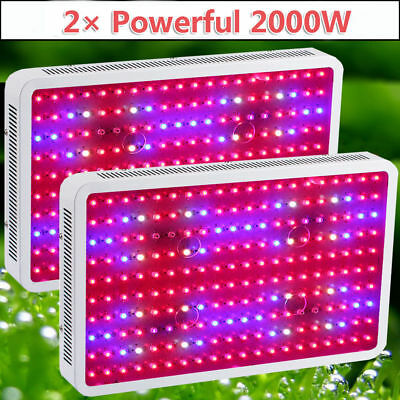 2 × 2000W Powerful LED Grow Light Panel Lamp for Plant Hydroponic Full Spectrum