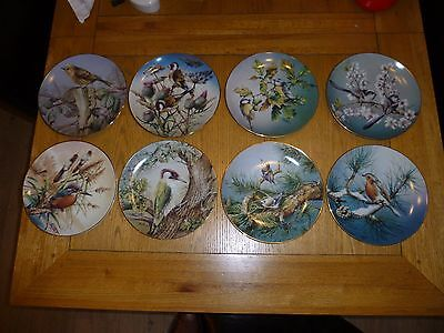 Hamilton Colourful Birds of Britain's Heritage Plate Collection (8 PLATES)
