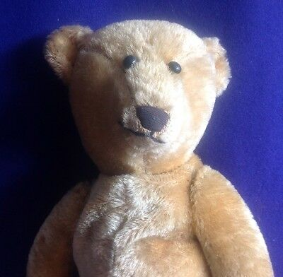 Rare Antique American Teddy Bear Mohair Shoe Button Eyes Fabric Nose Cutest Ever