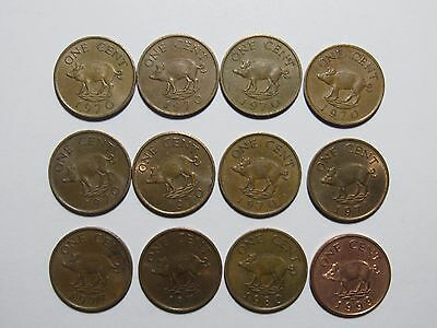 Lot of 12 Bermuda 1 Cent Pig Coins - Circulated