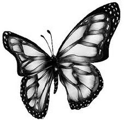Set Of 12 Black And White Butterfly Cake Bags