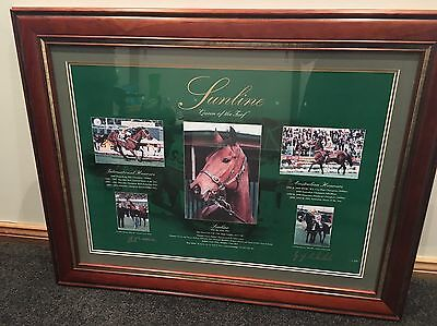 Rare Sunline Of The Turf Authentic Signed And Framed Print
