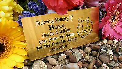 Personalised Engraved Pet Memorial Plaque Hamster Gold 10X5Cm (A20)