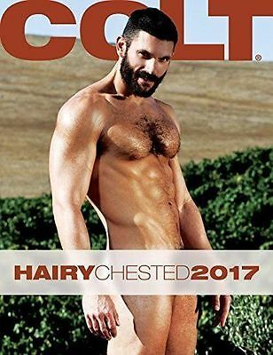 Gay interest Colt Hairy Chested Men 2017 Calendar Male nude Gay interest