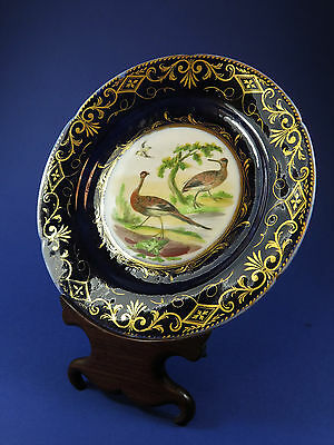 Antique Early 19th Century Coalport Ornithological Dessert Plate ~ Woodcock