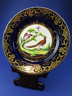Antique Early 19th Century Coalport Ornithological Dessert Plate Pheasant Pair