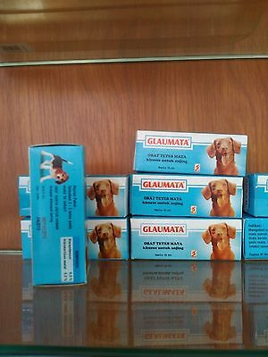 1 box GLAUMATA, eye drops for bacterial infection ONLY FOR DOG contain 15 ML