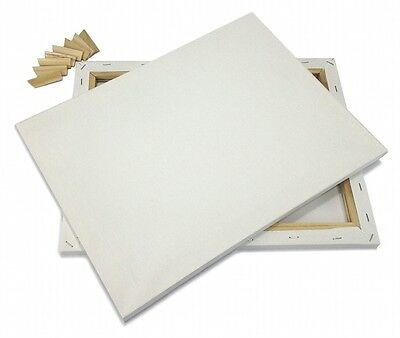"""Lot of 2 ARTIST CANVAS 10x20"""" Framed Pre-Stretched BLANK Cotton Double Gesso"""