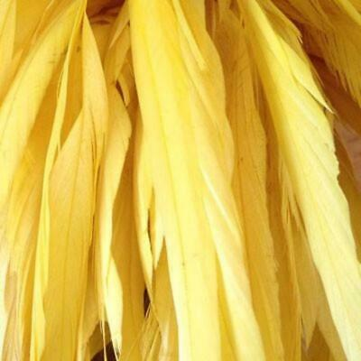 Yellow Stripped Coque Tails Pack of 10