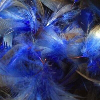 Royal Blue Mallard Duck Feather Plumage Pack of 10 grams