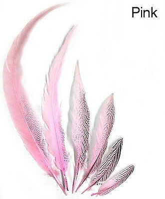"""20"""" To 30"""" Pink Pheasant Tail Feather *Seconds*"""