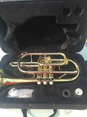Cornet & carrying case, excellent condition, hardly used, serviced & cleaned